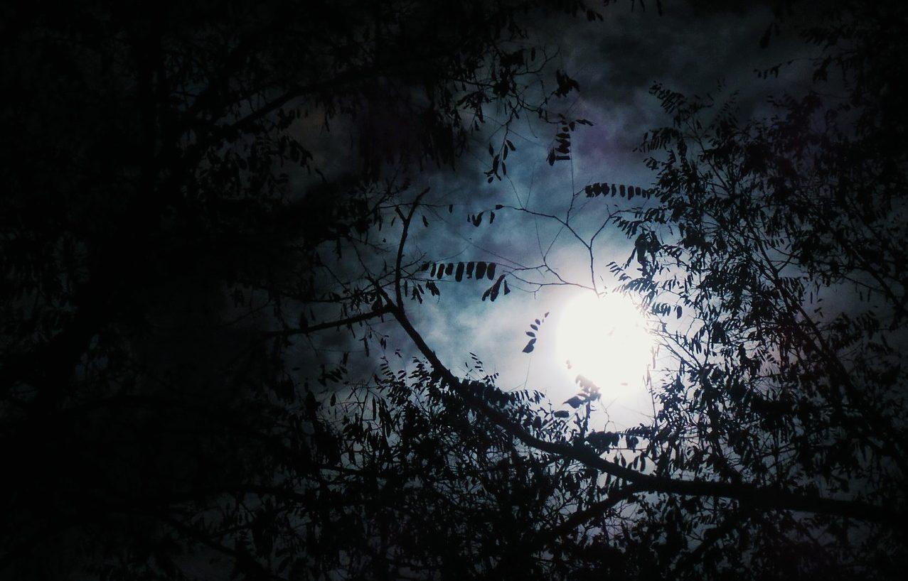 La Strega e la Luna