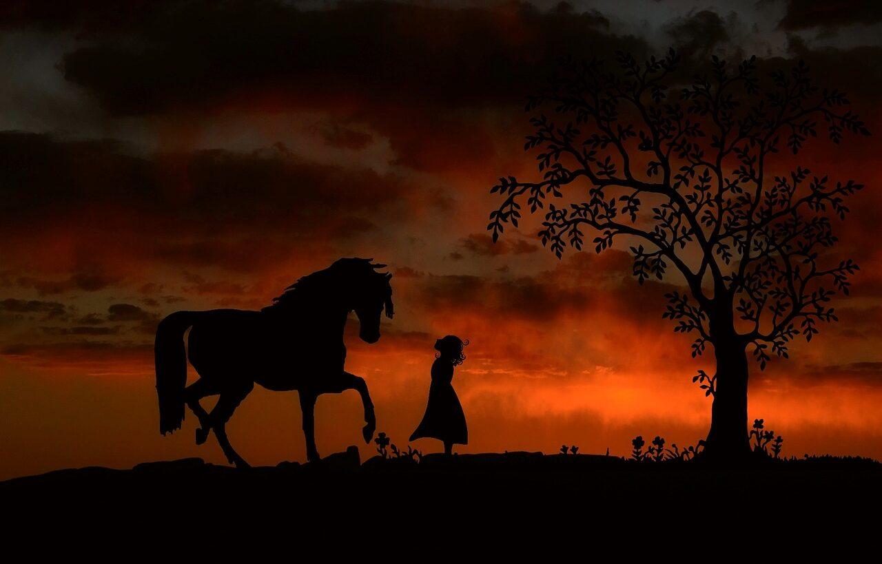 La Runa Reid. Il Cavallo dello Sciamano