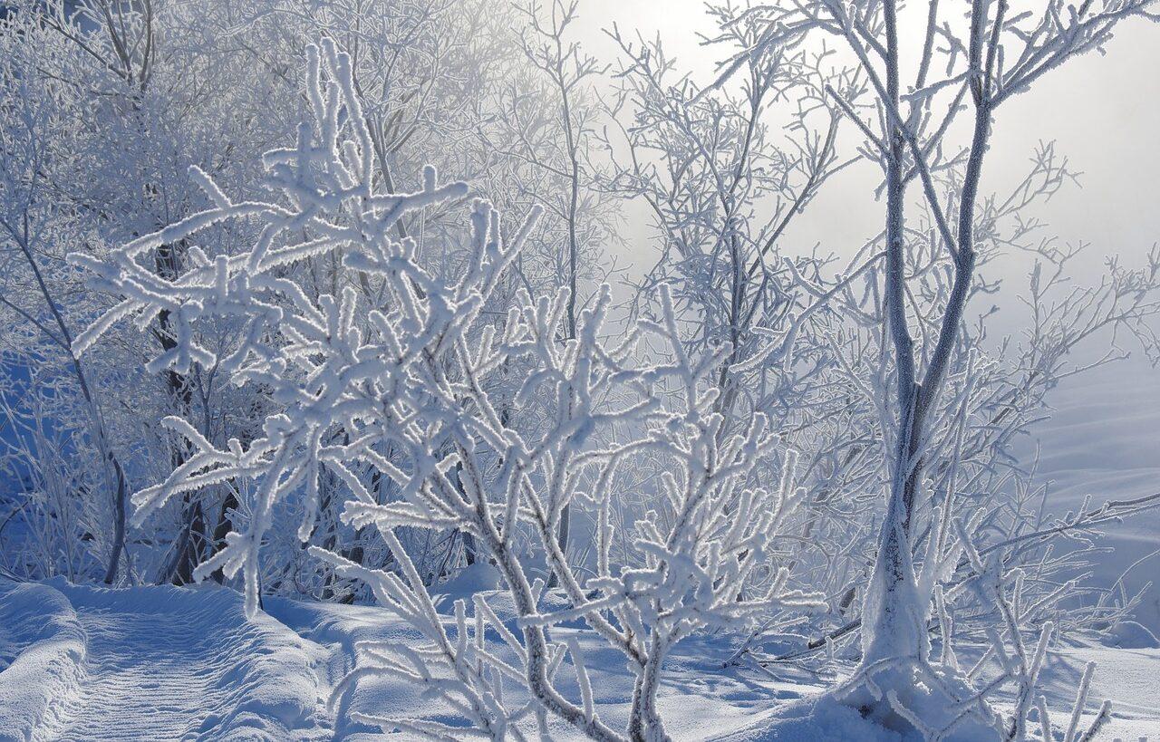 La Dea dell'Inverno. La Dea dei Desideri. Imbolc
